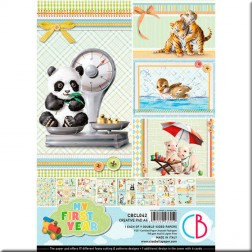 Papeles Scrapbooking My First Year (A4)