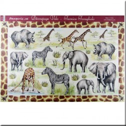 Papel decoupage - Safari (50 x 35)
